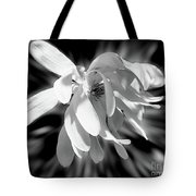 Magnolia Flower In Black And White Tote Bag