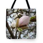 Magnolia Flower Pink White 19 Magnolia Tree Spring Art Tote Bag