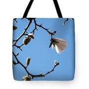 Magnolia Flowers Budding Art Prints Spring Floral Baslee Troutman Tote Bag