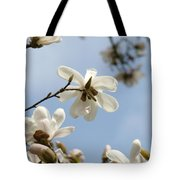 Magnolia Flowers White Magnolia Tree Art 2 Blue Sky Giclee Prints Baslee Troutman Tote Bag