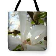 Magnolia Flowers White Magnolia Tree Flower Art Spring Baslee Troutman Tote Bag