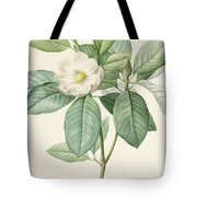 Magnolia Glauca Tote Bag