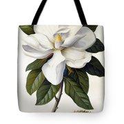 Magnolia Grandiflora Tote Bag