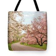 Magnolia Grove Tote Bag