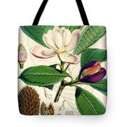 Magnolia Hodgsonii Tote Bag