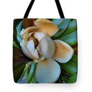 Magnolia In Oxford Tote Bag