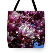 Magnolia In Spring Tote Bag