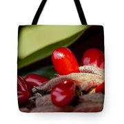 Magnolia Seeds Tote Bag