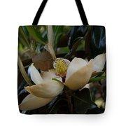 Magnolia Seeds Tote Bag