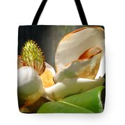 Magnolia Sunburn Tote Bag