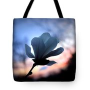 Magnolia Sunset Tote Bag