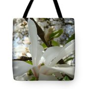 Magnolia Tree Flowers Art Prints White Magnolia Flower Tote Bag