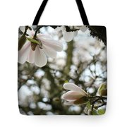 Magnolia Tree Flowers Pink White Magnolia Flowers Spring Artwork Tote Bag