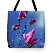 Magnolia Tulip Tree Tote Bag
