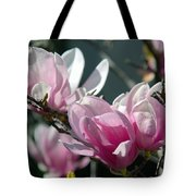 Magnolias Are Blooming Tote Bag