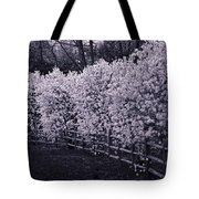 Magnolias In Llewellyn Park, West Orange, New Jersey Tote Bag