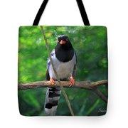 Magpie I Tote Bag