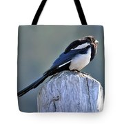Magpie In The Sun Tote Bag