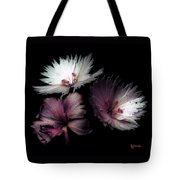 Maiden  Mother Crone Tote Bag
