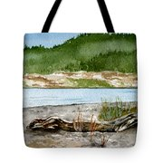 Maine Beach Wood Tote Bag
