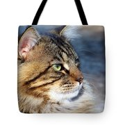 Maine Coon II Tote Bag