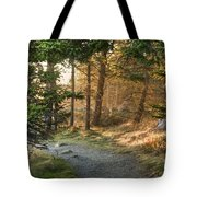 Maine Forest At Dusk Tote Bag