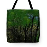 Maine Forest Tote Bag