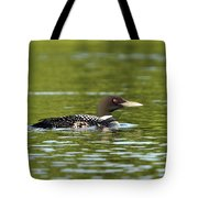 Maine Loon 5 Tote Bag