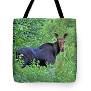 Maine Moose Tote Bag