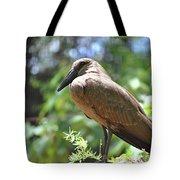 Majestic Bird Tote Bag