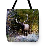 Majestic Bull Elk Survivor In Colorado  Tote Bag