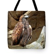 Majestic Eagle Tote Bag