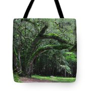 Majestic Fern Covered Oak Tote Bag