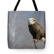 Majestic Morning Tote Bag