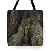 Majestic Tree Trunk Tote Bag