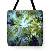 Majestic Treeferns Tote Bag