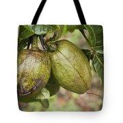 Malabar Chestnuts Tote Bag