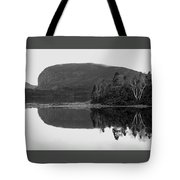Malady Head Tote Bag