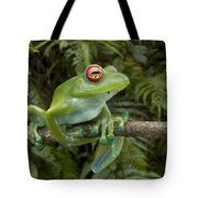 Malagasy Web-footed Frog Boophis Luteus Tote Bag