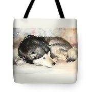 Malamute At Rest Tote Bag
