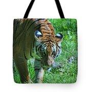 Malayan Tiger # 2 Tote Bag
