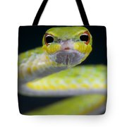Malayan Vine Snake Tote Bag