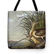 Male And Female Long Billed Curlew Tote Bag