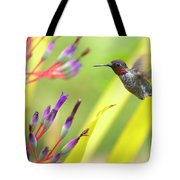 Male Anna's Hummingbird Tote Bag