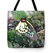 Male Birdwing Butterfly Tote Bag