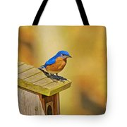 Male Blue Bird Guarding House Tote Bag