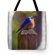 Male Bluebird Tote Bag