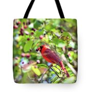 Male Cardinal And His Berry Tote Bag by Kerri Farley