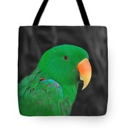 Male Eclectus Tote Bag