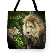 Male Lion And Cub Tote Bag
